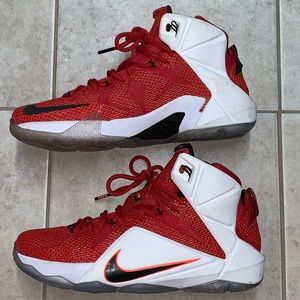 "NIKE LEBRON 12 ""HEART OF A LION"" size 10"